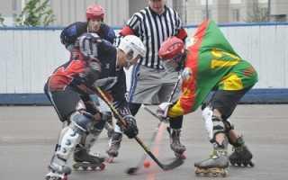 Хоккей на роликах. Виды и снаряжение. Как играть и особенности
