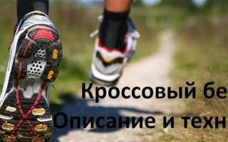 Кроссовый бег. Виды и техника бега. Начинающим и особенности