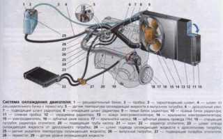 Система охлаждения ваз 2109 инжектор