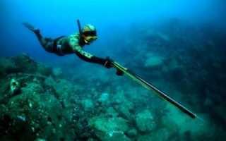 Подводная охота. Виды и правила. Снаряжение и особенности