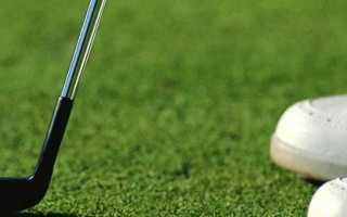 Клюшка для гольфа. Виды и применение. Как выбрать и особенности