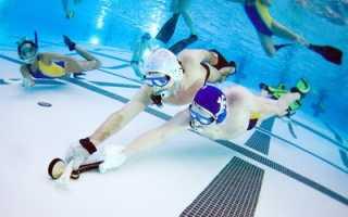 Подводный хоккей. Игра и правила. Снаряжение и особенности