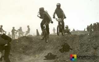 Велосипедный мотокросс(BMX). Виды и снаряжение.Травмоопасность