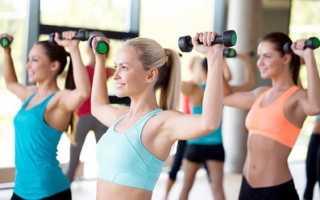 Силовая аэробика. Структура занятий и упражнений. Плюсы и минусы