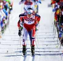 Лыжные гонки. Виды и стили. Плюсы и особенности. Трасса