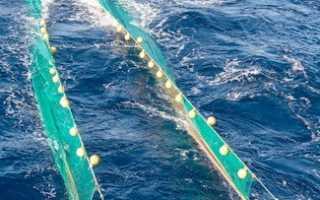 Рыболовные сети. Виды и применение. Характеристики и установка